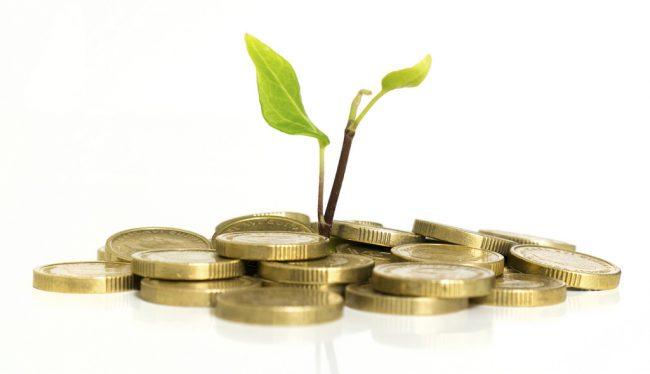 Nên gửi tiết kiệm ngân hàng hình thức nào? (Nguồn Internet)